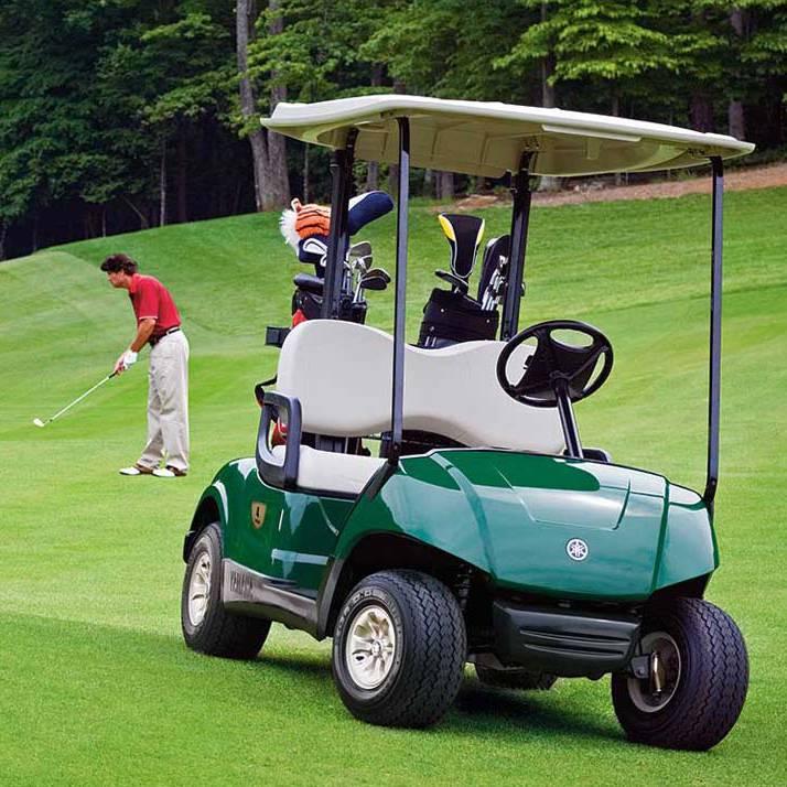 Batterie per veicoli elettrici e golf car